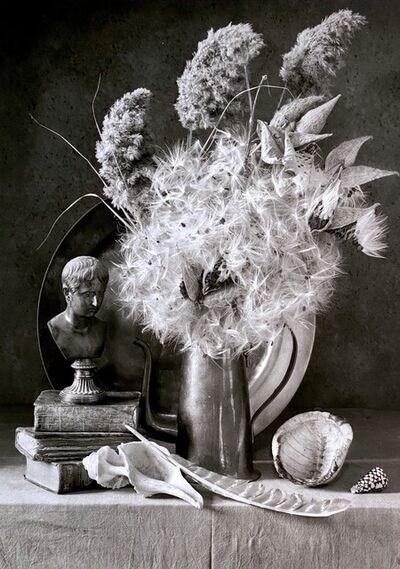 Arkady Lvov, 'Milkweed, Napoleon and Shells', 2006