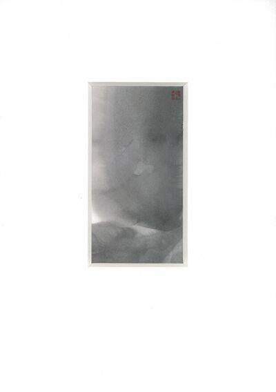 REIKO TSUNASHIMA, 'Transparent Fire', 2006