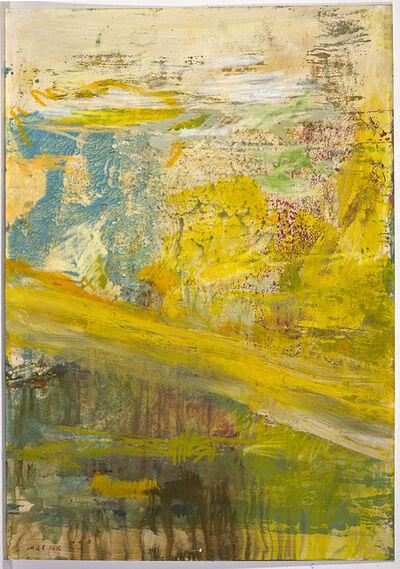 Maja Lisa Engelhardt, 'The Grand Rapid (38a)', 2014
