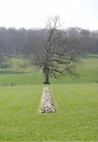 Richard Long, 'Tame Buzzard Line', 2001
