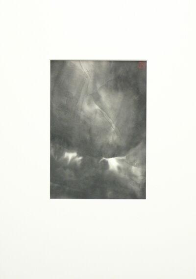 REIKO TSUNASHIMA, 'Phoenix', 2006