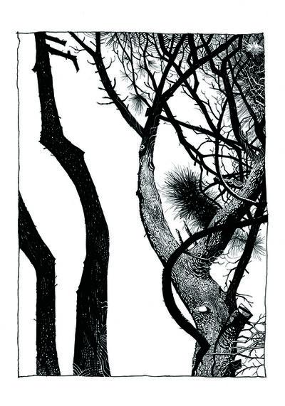 Jamie Hewlett, 'Pine 9', 2015