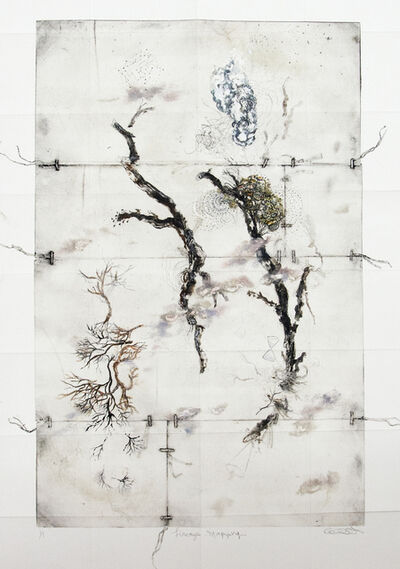 Susan Collett, 'Lineage Mapping ', 2015