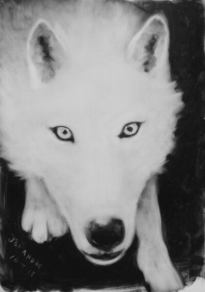 Joe Andoe, 'Wolf 10/7/18', 2018