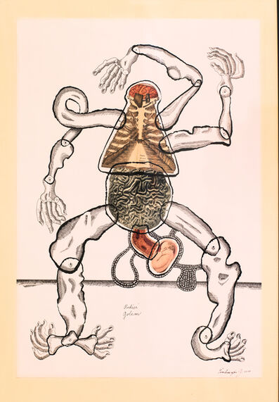 Jan Švankmajer, 'Golem Giving Birth', 2017