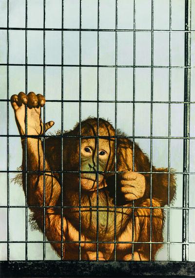 Michelangelo Pistoletto, 'Scimmia in gabbia', 1973