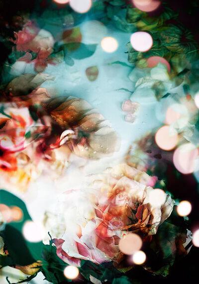 Isabelle Menin, 'Petites Natures #9', 2015