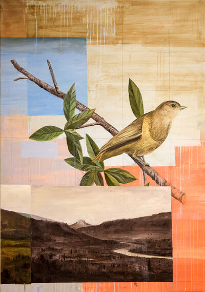 Tom Judd, 'Bird on a Branch'