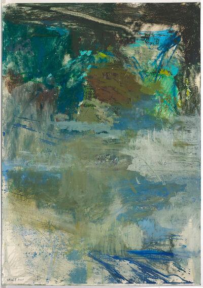 Maja Lisa Engelhardt, 'The Grand Rapid (44)', 2014