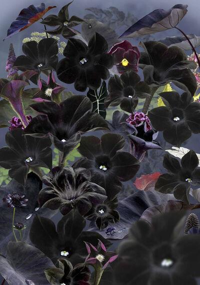 Ruud Van Empel, 'Floresta Negra #1', 2018