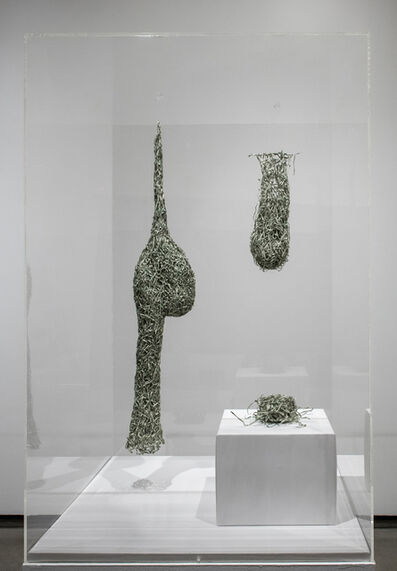 Fiona Hall, 'Nests from Tender', 2016
