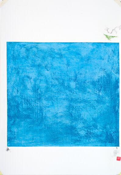Zsolt Tibor, 'controlled blue', 2016