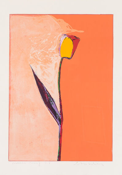 Fritz Scholder, 'Tulip', 1983