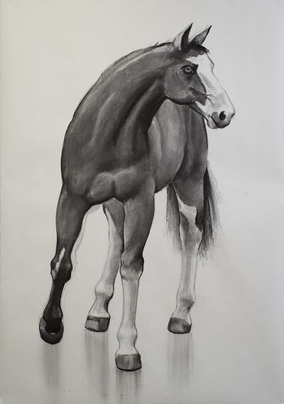 William Beckman, 'Mask Horse', 2017