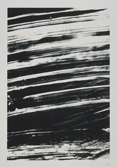 Ellsworth Kelly, 'The Rhine', 2005