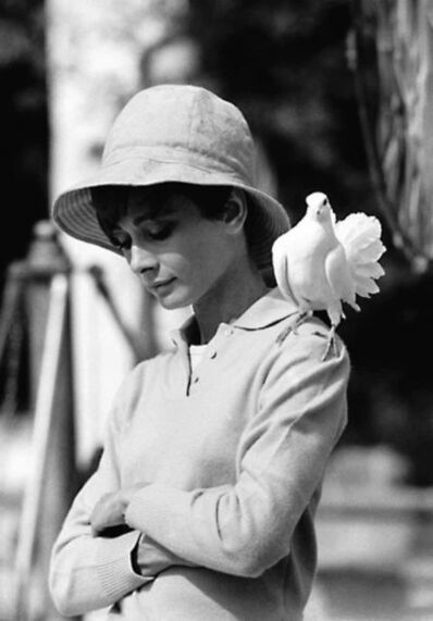 Terry O'Neill, 'Audrey Hepburn with Dove, Saint Tropez', 1967