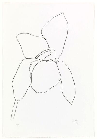 Ellsworth Kelly, 'Cyclamen I', 1964-65