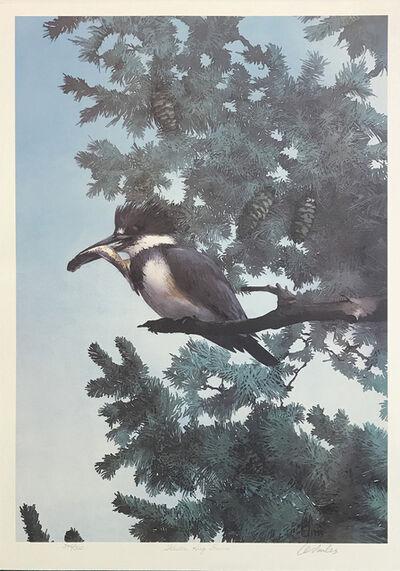 Carl Arlen, 'WESTERN KING FISHER', ca. 2000