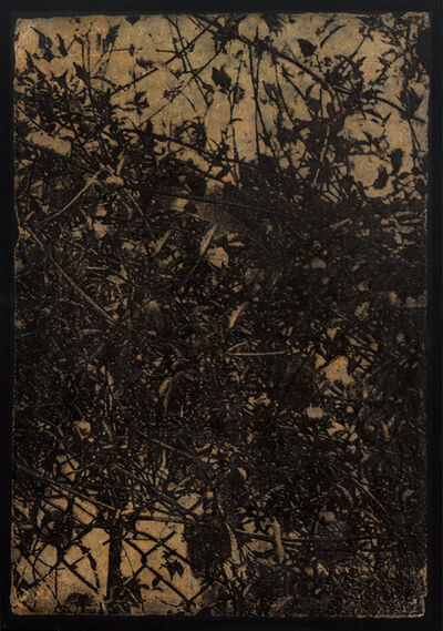 Rohini Devasher, 'Thicket II (set of 4)', 2004