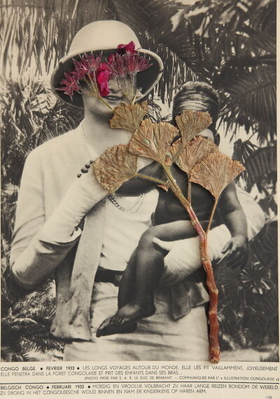 Lien Botha, 'Plant Press Pelargonium', 2009