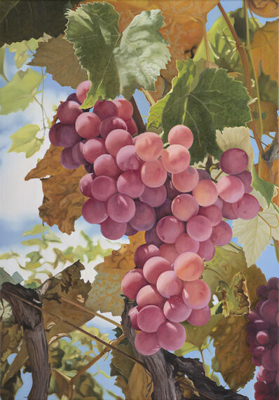 Mustafa Hulusi, 'Grapes 3', 2008