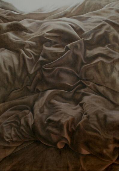 Caroline Thon, 'Sheetscape', 2017