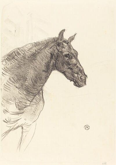 Henri de Toulouse-Lautrec, 'Old Horse (Le vieux cheval)', 1897