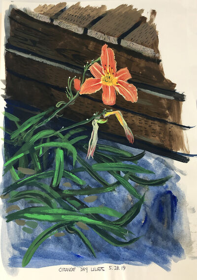 Cole Case, 'Orange Day Lilies 5.28.19', 2019