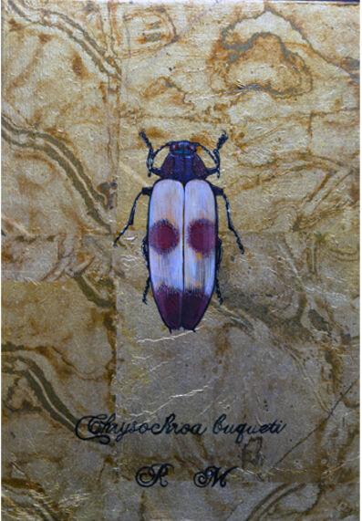 Reiko Megro, 'Chrysochroa buqueti', 2019