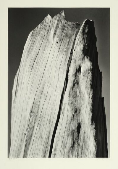 Ansel Adams, 'White Stump, Sierra Nevada, California', 1936