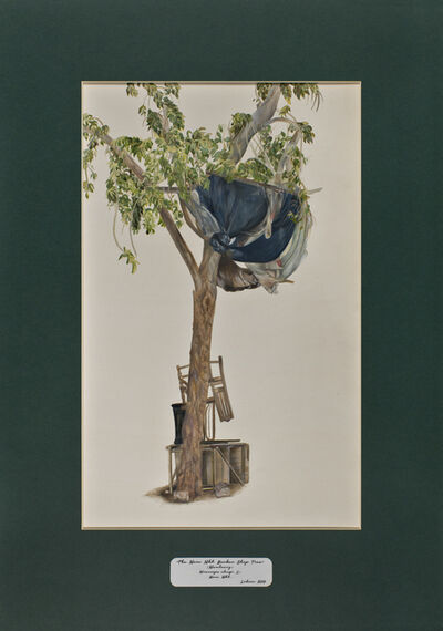 David Chalmers Alesworth, 'Trees of Pakistan - The Main Mkt. Barber Shop Tree, Maulsary', 2013-2014