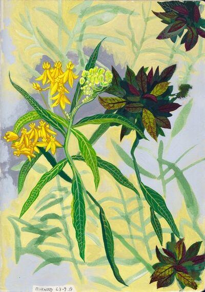 Cole Case, 'Milkweed 6.8-9.19', 2019