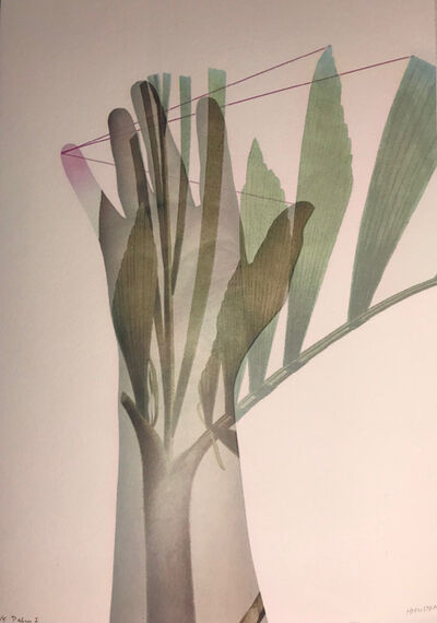 Heather Huston, 'Palm I', 2018
