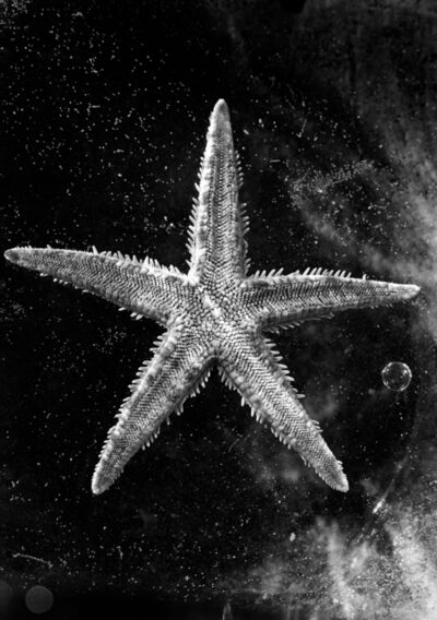 Nomi Baumgartl, 'Ocean Star in the Universe, dedicted to Andreas Feininger', 2002