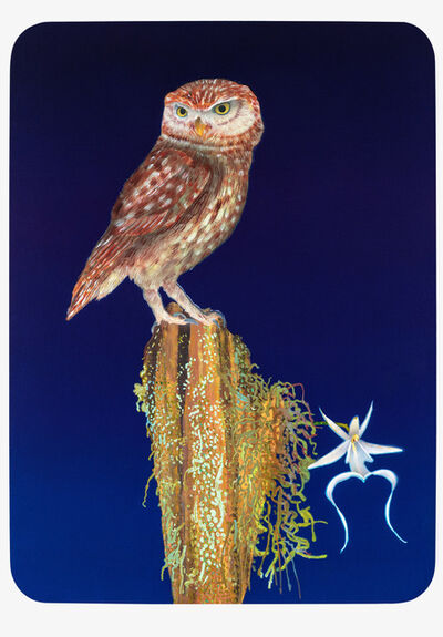 Michael Krueger, 'Owl & The Orchid', 2020