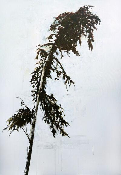 Aya Eliav, 'Tree #01', 2018