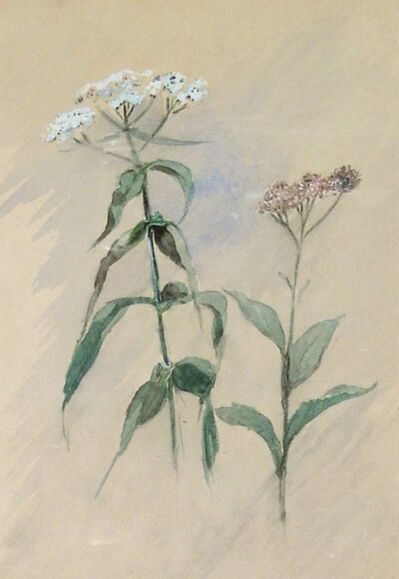 Ralph Albert Blakelock, 'Wildflower Still Life', Late 19th century