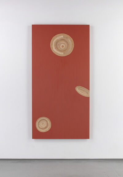 Kishio Suga 菅木志雄, 'Plural and Buried-6 ', 2007