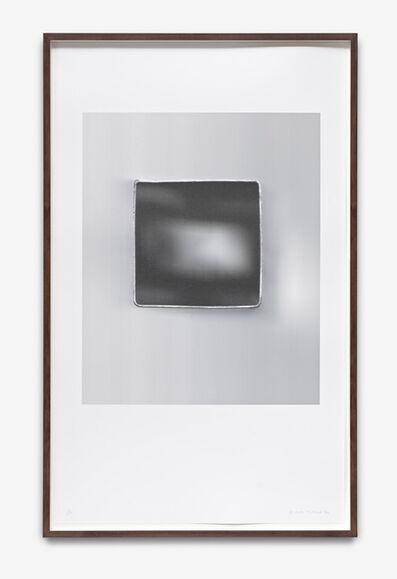 Nuria Fuster, 'Planarios (01)', 2013