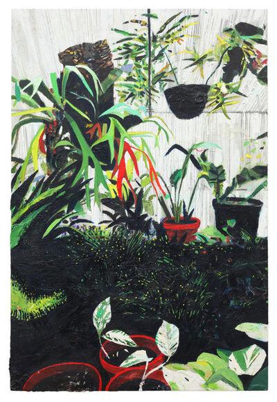 Raffi Kalenderian, 'Mills Greenhouse II', 2016
