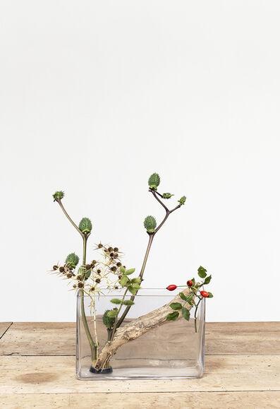 Martina della Valle, 'One Flower, One Leaf #1 (Prato, Italy)', 2018