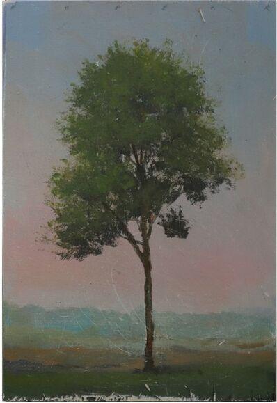 Peter Hoffer, 'Forrest (220206)', 2020