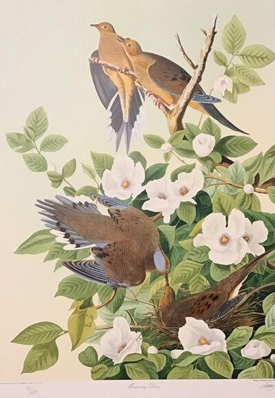 John James Audubon, 'Mourning Doves - Publisher's Proof  (Plate 17) Signed, Numbered ', 1992