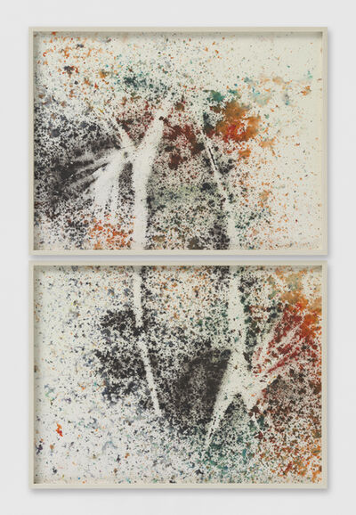 Sam Falls, 'Untitled (Venice, CA, Birds of Paradise drawing 1, diptych)', 2014