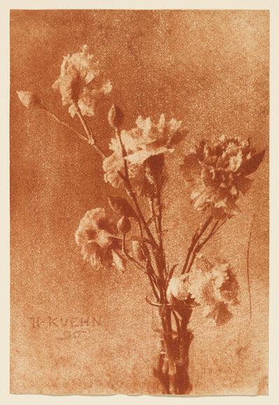 Heinrich Kühn, 'Still Life with Carnations', 1896