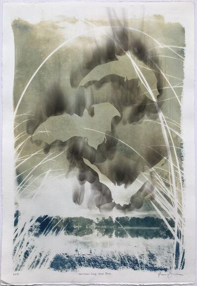 Naomi Friend, 'Smoke and Chaff: Northern Long-Eared Bats', 2019