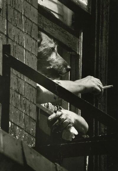 Art Shay, 'Smoking Dog', 1971