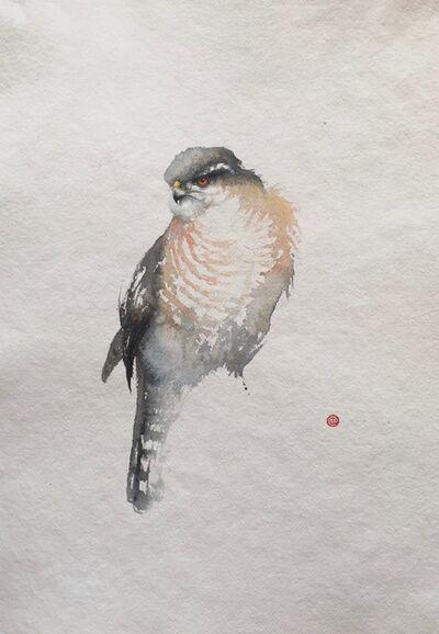 Karl Martens, 'Sparrow Hawk'