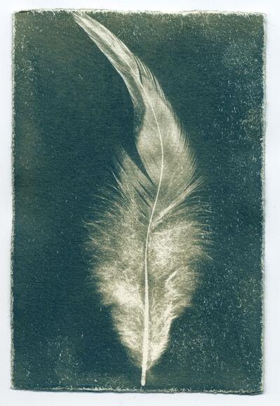 Ken Rosenthal, 'Feathers #14-12', 2014