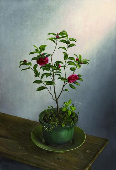 Xi Song, 'Camellia 茶花', 2003